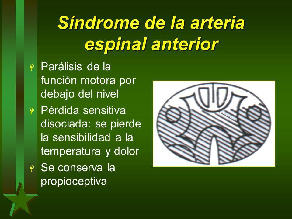 Síndrome de la arteria espinal anterior H Parálisis de la función motora por debajo del nivel H Pérdida sensitiva disociada: se pierde la sensibilidad