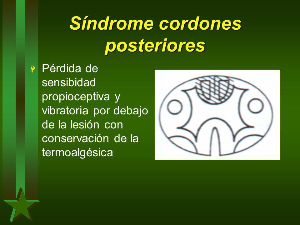 Síndrome cordones posteriores H Pérdida de sensibidad propioceptiva y vibratoria por debajo de la lesión con conservación de la termoalgésica
