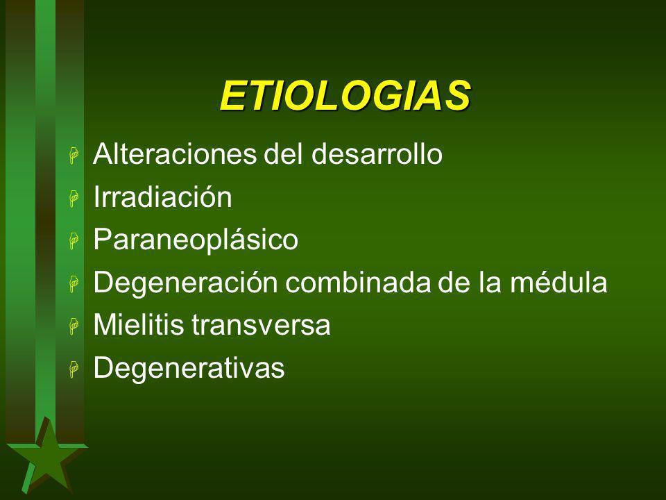 ETIOLOGIAS H Alteraciones del desarrollo H Irradiación H Paraneoplásico H Degeneración combinada de la médula H Mielitis transversa H Degenerativas