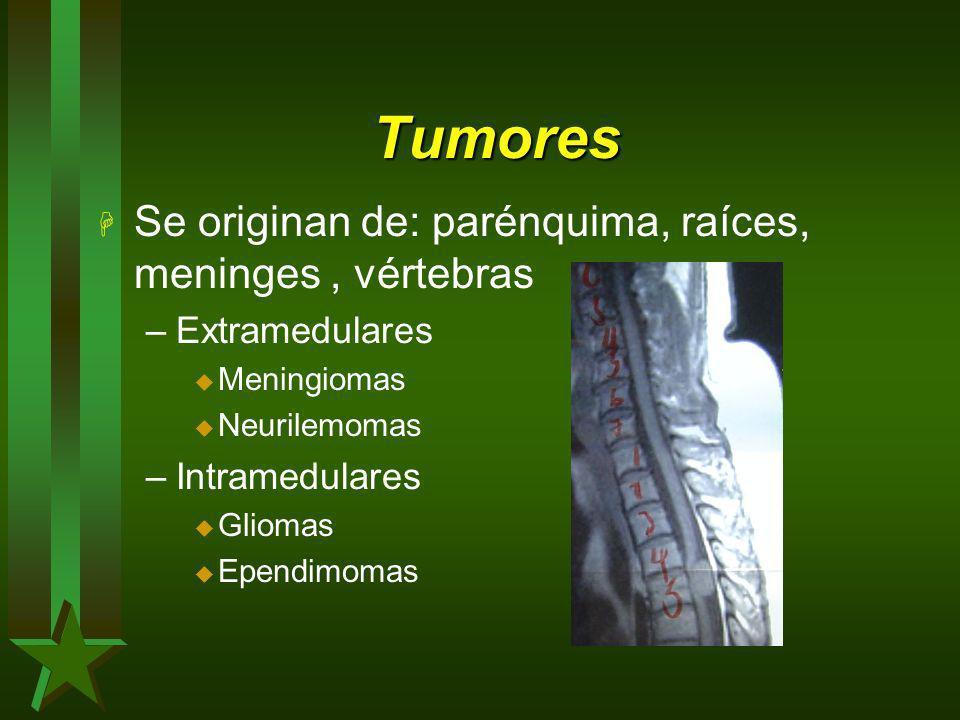 Tumores H Se originan de: parénquima, raíces, meninges, vértebras –Extramedulares u Meningiomas u Neurilemomas –Intramedulares u Gliomas u Ependimomas