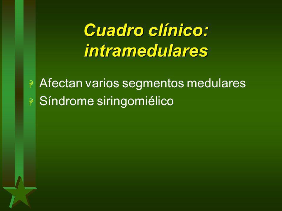 Cuadro clínico: intramedulares H Afectan varios segmentos medulares H Síndrome siringomiélico