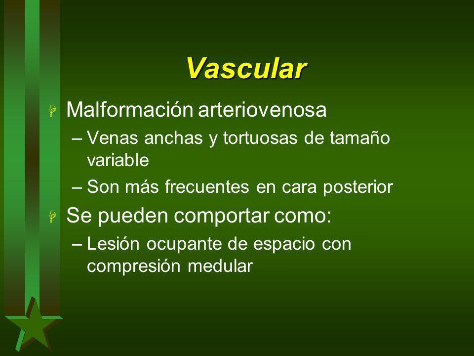 Vascular H Malformación arteriovenosa –Venas anchas y tortuosas de tamaño variable –Son más frecuentes en cara posterior H Se pueden comportar como: –