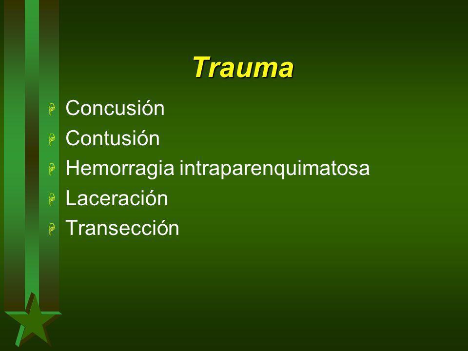 Trauma H Concusión H Contusión H Hemorragia intraparenquimatosa H Laceración H Transección