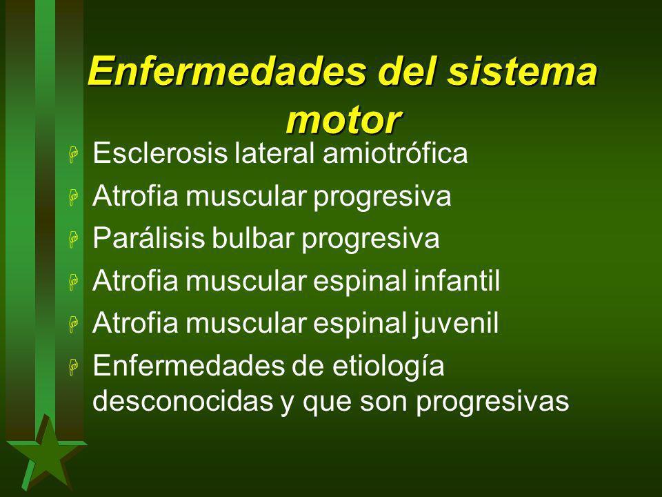 Enfermedades del sistema motor H Esclerosis lateral amiotrófica H Atrofia muscular progresiva H Parálisis bulbar progresiva H Atrofia muscular espinal