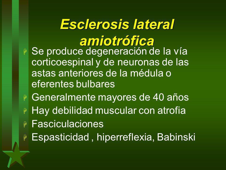 Esclerosis lateral amiotrófica H Se produce degeneración de la vía corticoespinal y de neuronas de las astas anteriores de la médula o eferentes bulba