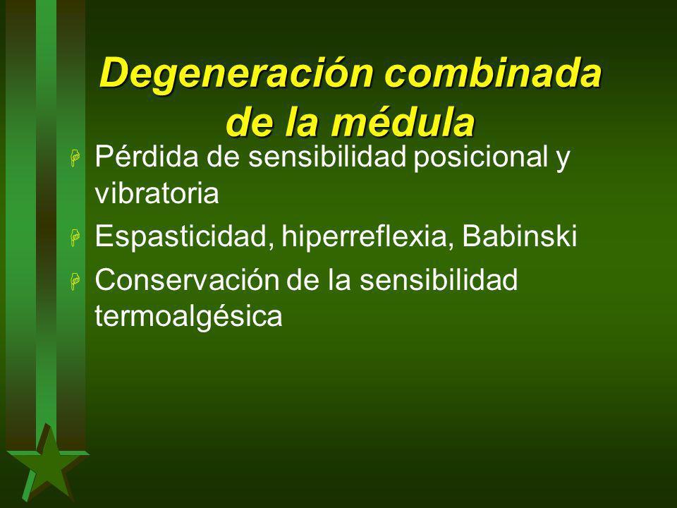 Degeneración combinada de la médula H Pérdida de sensibilidad posicional y vibratoria H Espasticidad, hiperreflexia, Babinski H Conservación de la sen