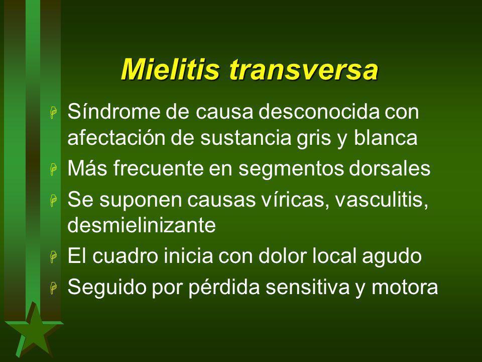 Mielitis transversa H Síndrome de causa desconocida con afectación de sustancia gris y blanca H Más frecuente en segmentos dorsales H Se suponen causa