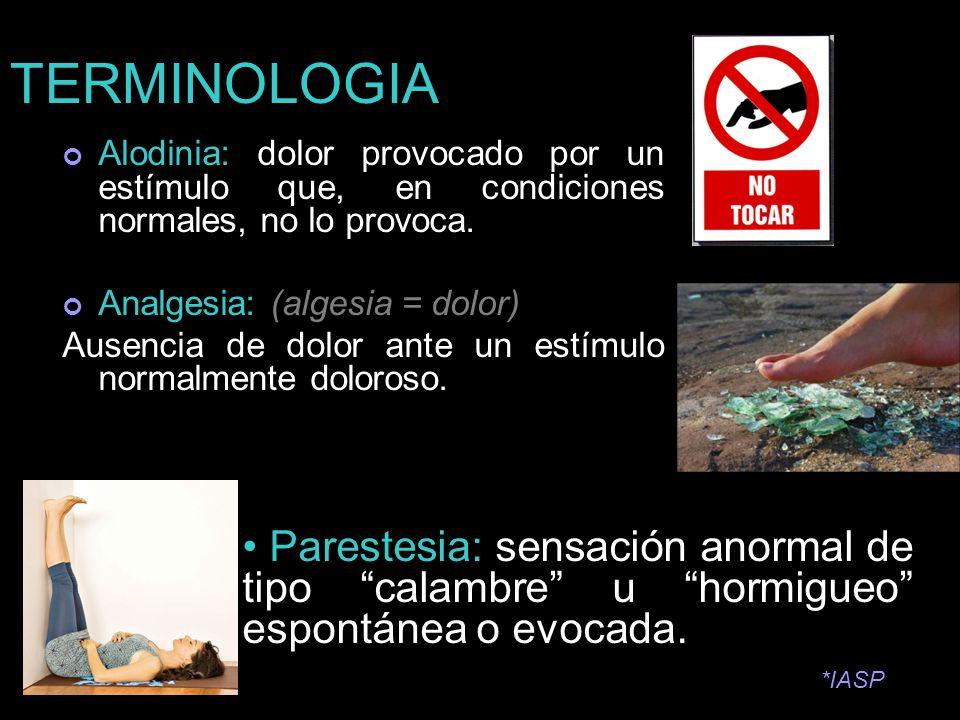 TERMINOLOGIA Alodinia: dolor provocado por un estímulo que, en condiciones normales, no lo provoca. Analgesia: (algesia = dolor) Ausencia de dolor ant