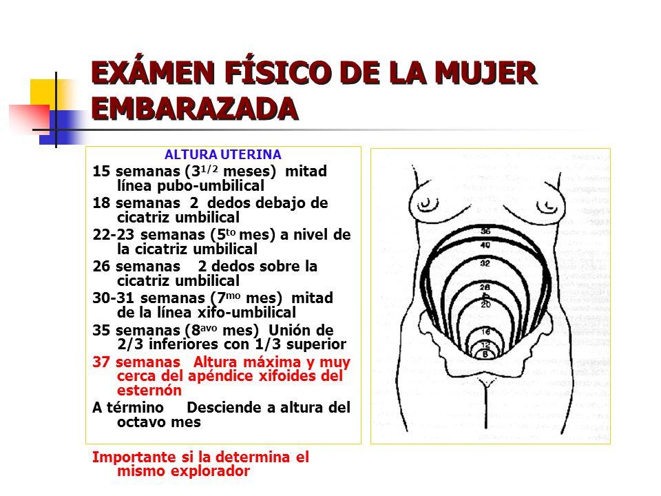 EXÁMEN FÍSICO DE LA MUJER EMBARAZADA ALTURA UTERINA 15 semanas (3 1/2 meses) mitad línea pubo-umbilical 18 semanas 2 dedos debajo de cicatriz umbilica