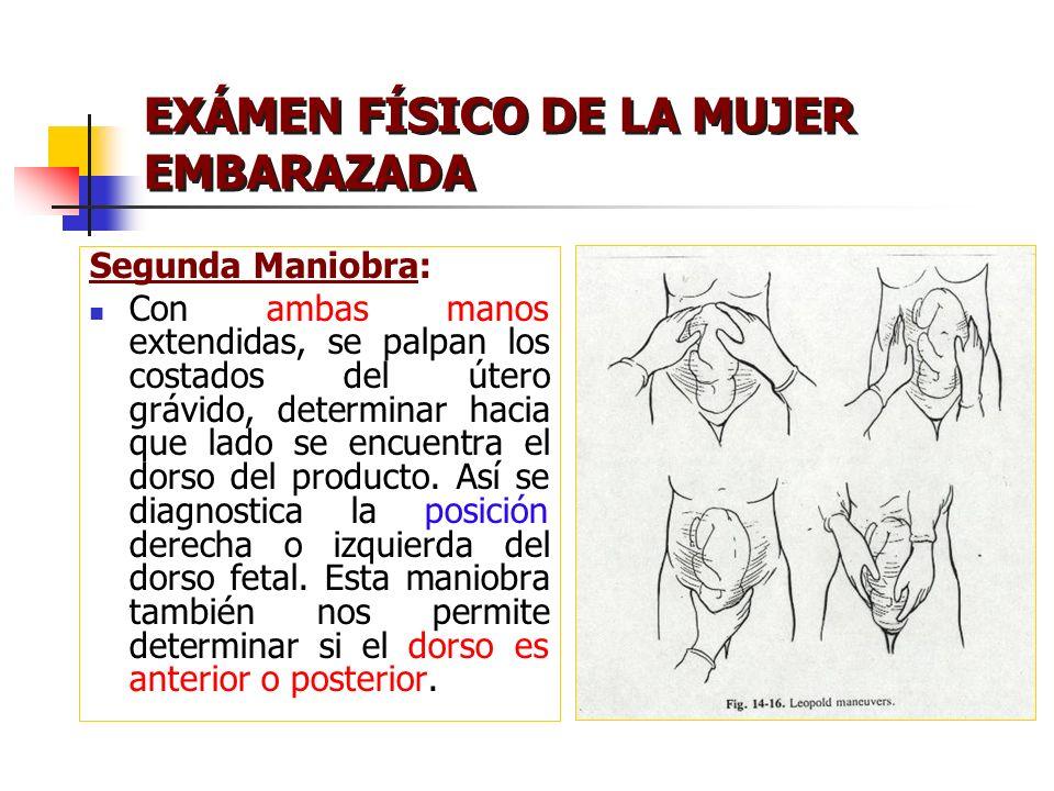 EXÁMEN FÍSICO DE LA MUJER EMBARAZADA Segunda Maniobra: Con ambas manos extendidas, se palpan los costados del útero grávido, determinar hacia que lado