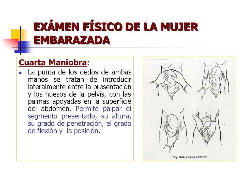 EXÁMEN FÍSICO DE LA MUJER EMBARAZADA Cuarta Maniobra: La punta de los dedos de ambas manos se tratan de introducir lateralmente entre la presentación
