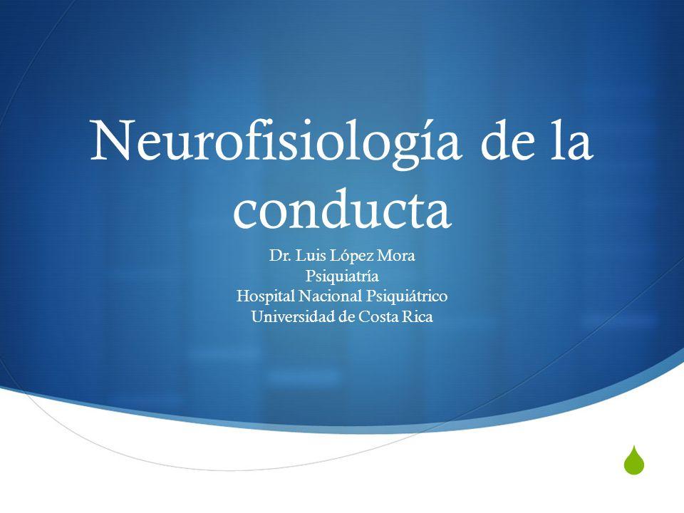 Neurofisiología de la conducta Dr. Luis López Mora Psiquiatría Hospital Nacional Psiquiátrico Universidad de Costa Rica
