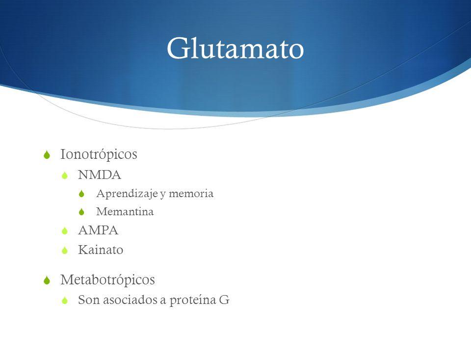 Glutamato Ionotrópicos NMDA Aprendizaje y memoria Memantina AMPA Kainato Metabotrópicos Son asociados a proteína G