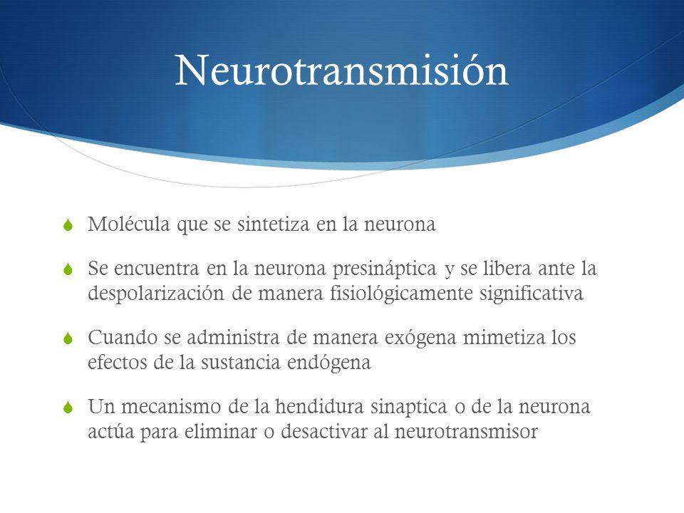 Neurotransmisión Molécula que se sintetiza en la neurona Se encuentra en la neurona presináptica y se libera ante la despolarización de manera fisioló