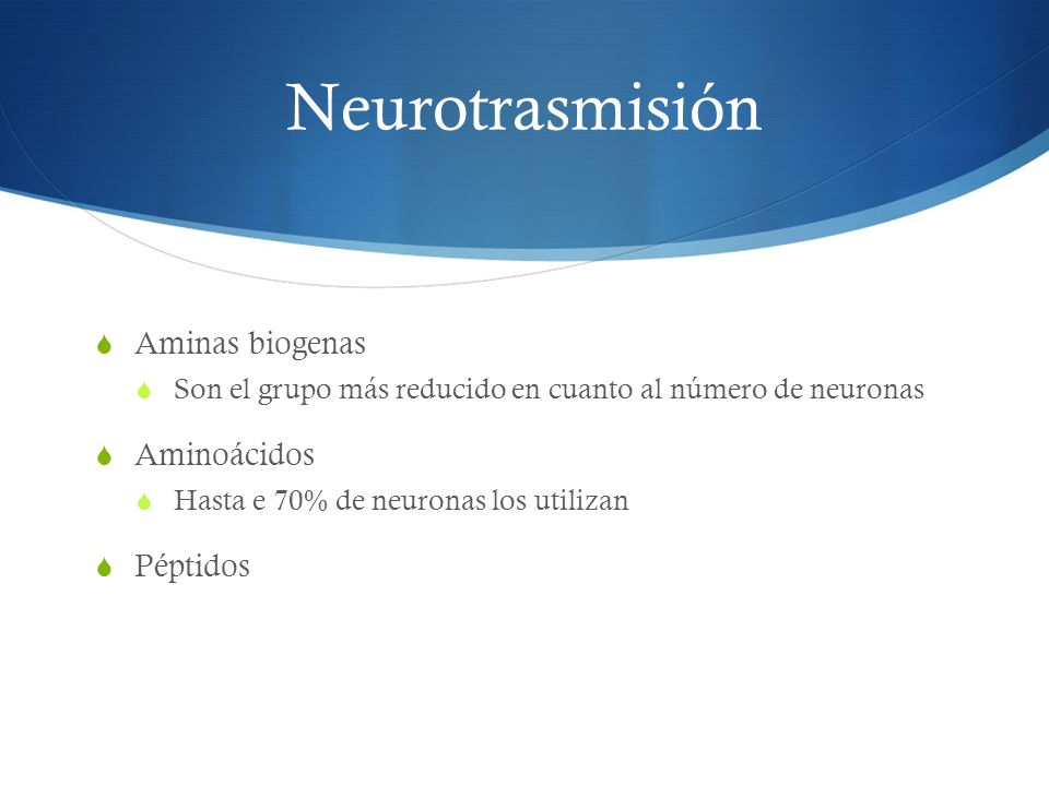 Neurotrasmisión Aminas biogenas Son el grupo más reducido en cuanto al número de neuronas Aminoácidos Hasta e 70% de neuronas los utilizan Péptidos