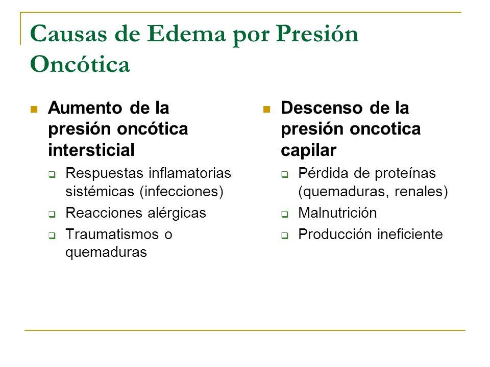 Causas de Edema por Presión Oncótica Descenso de la presión oncotica capilar Pérdida de proteínas (quemaduras, renales) Malnutrición Producción inefic