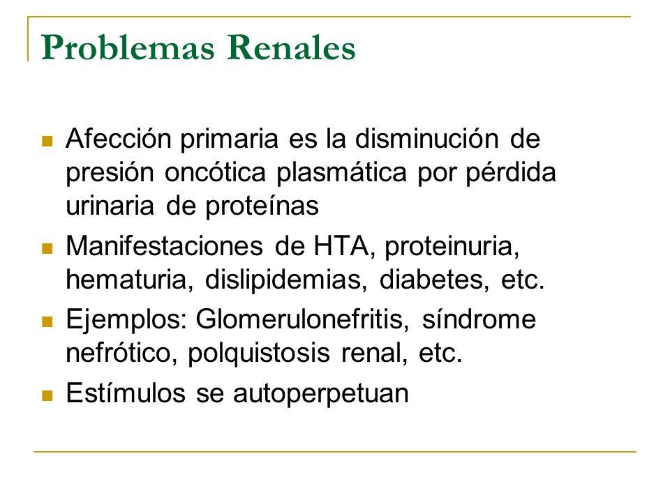 Problemas Renales Afección primaria es la disminución de presión oncótica plasmática por pérdida urinaria de proteínas Manifestaciones de HTA, protein