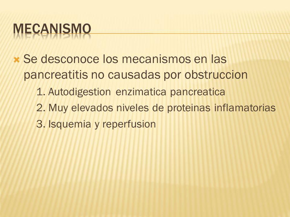 Se desconoce los mecanismos en las pancreatitis no causadas por obstruccion 1. Autodigestion enzimatica pancreatica 2. Muy elevados niveles de protein