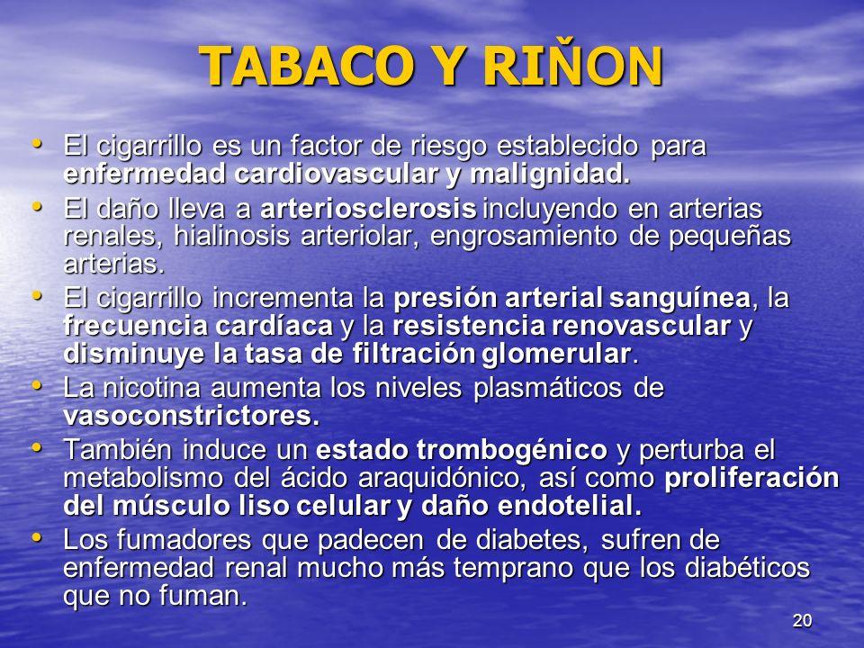 20 TABACO Y RI ŇON El cigarrillo es un factor de riesgo establecido para enfermedad cardiovascular y malignidad. El cigarrillo es un factor de riesgo