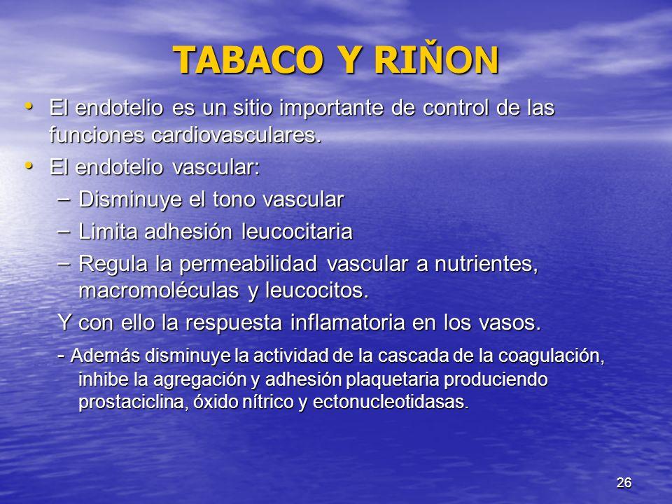 27 TABACO Y RI ŇON El óxido nítrico es un factor importante mediador del endotelio, por sus propiedades vasodilatadoras, antiproliferativos, antiadhesivos, disminución de permeabilidad y propiedades antiinflamatorias.