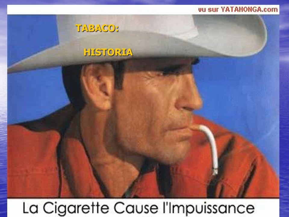 7 TABACO Y RINON El tabaco es el nombre común de dos plantas de la familia de las Solanáceas cultivadas por sus hojas que una vez curadas, se fuman, se mascan o se aspiran en forma de rapé.