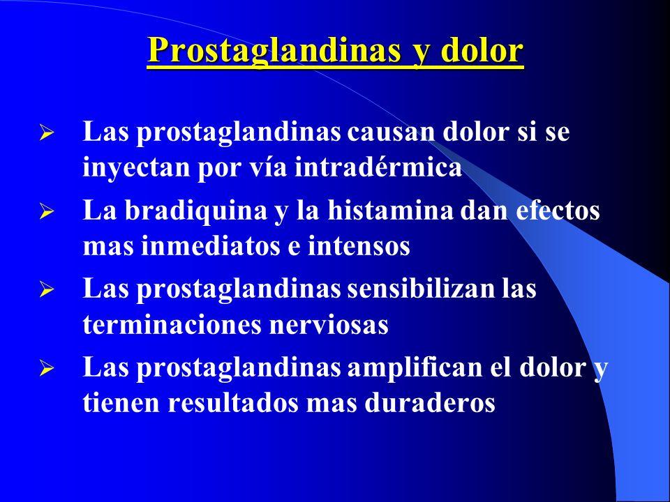 Prostaglandinas y dolor Las prostaglandinas causan dolor si se inyectan por vía intradérmica La bradiquina y la histamina dan efectos mas inmediatos e