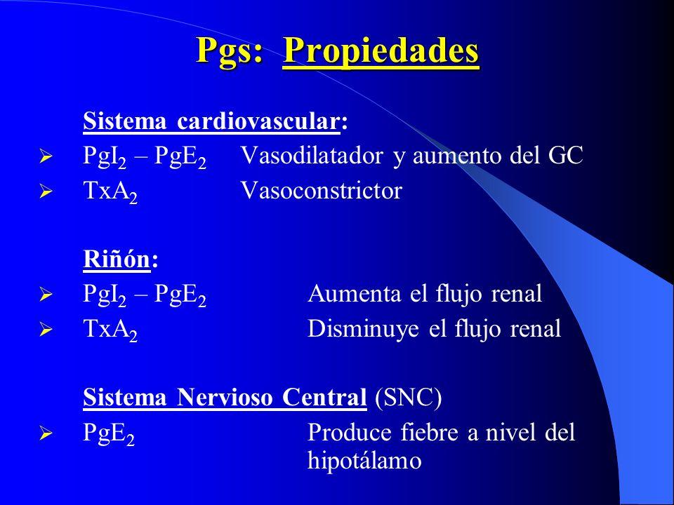 Pgs: Propiedades Sistema cardiovascular: PgI 2 – PgE 2 Vasodilatador y aumento del GC TxA 2 Vasoconstrictor Riñón: PgI 2 – PgE 2 Aumenta el flujo rena