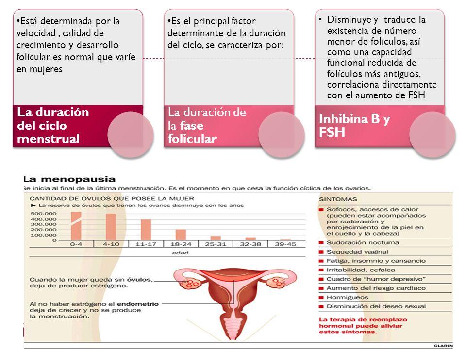 Está determinada por la velocidad, calidad de crecimiento y desarrollo folicular, es normal que varíe en mujeres La duración del ciclo menstrual Es el