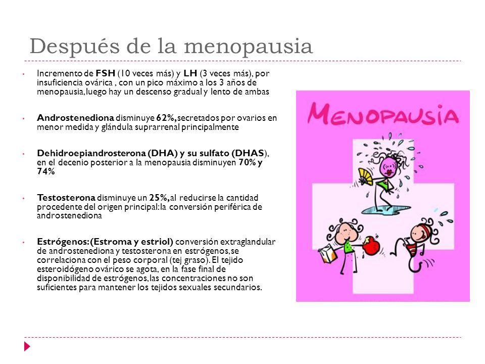 Después de la menopausia Incremento de FSH (10 veces más) y LH (3 veces más), por insuficiencia ovárica, con un pico máximo a los 3 años de menopausia