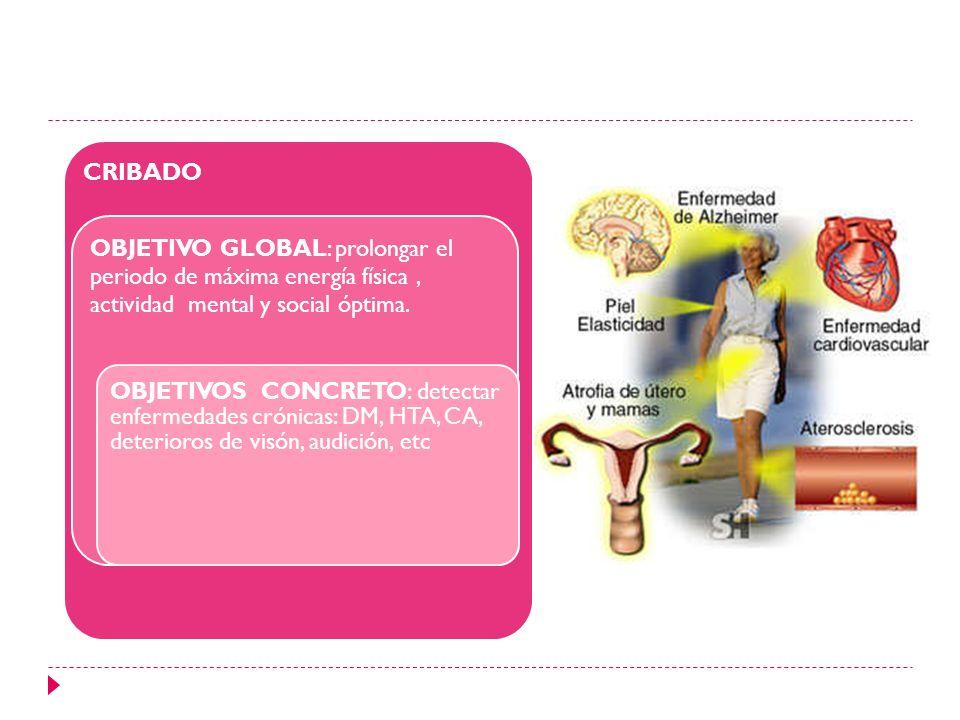 CRIBADO OBJETIVO GLOBAL: prolongar el periodo de máxima energía física, actividad mental y social óptima. OBJETIVOS CONCRETO: detectar enfermedades cr