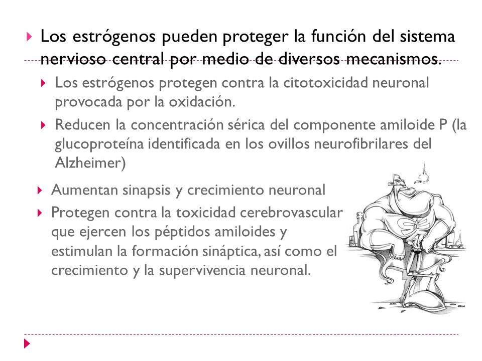 Los estrógenos pueden proteger la función del sistema nervioso central por medio de diversos mecanismos. Los estrógenos protegen contra la citotoxicid