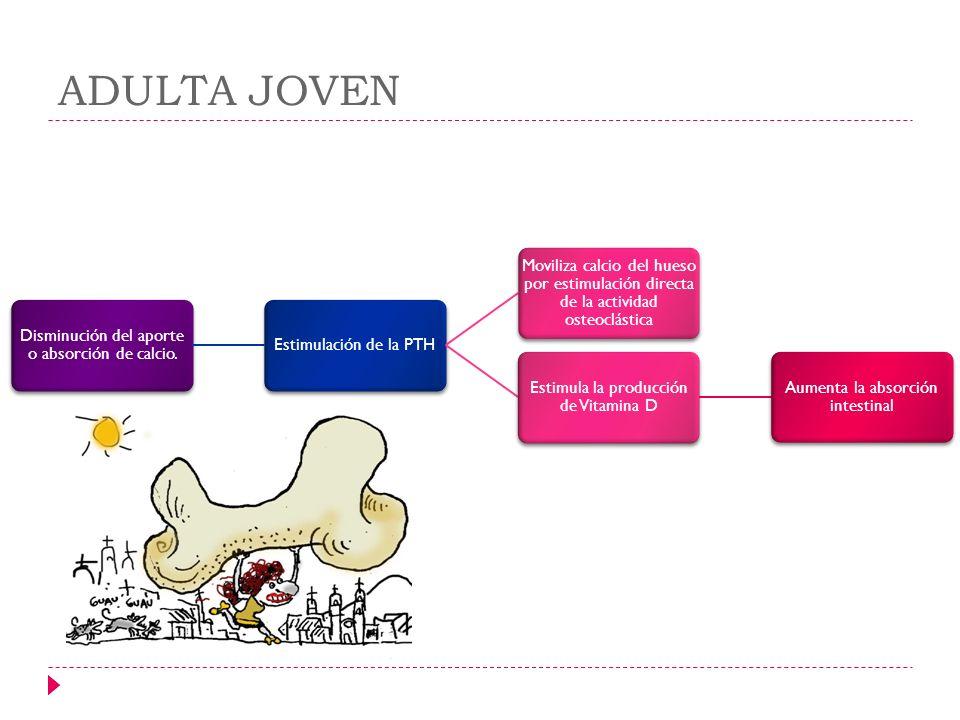 Disminución del aporte o absorción de calcio. Estimulación de la PTH Moviliza calcio del hueso por estimulación directa de la actividad osteoclástica