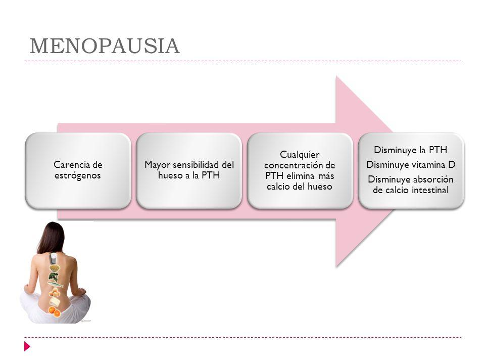 MENOPAUSIA Carencia de estrógenos Mayor sensibilidad del hueso a la PTH Cualquier concentración de PTH elimina más calcio del hueso Disminuye la PTH D