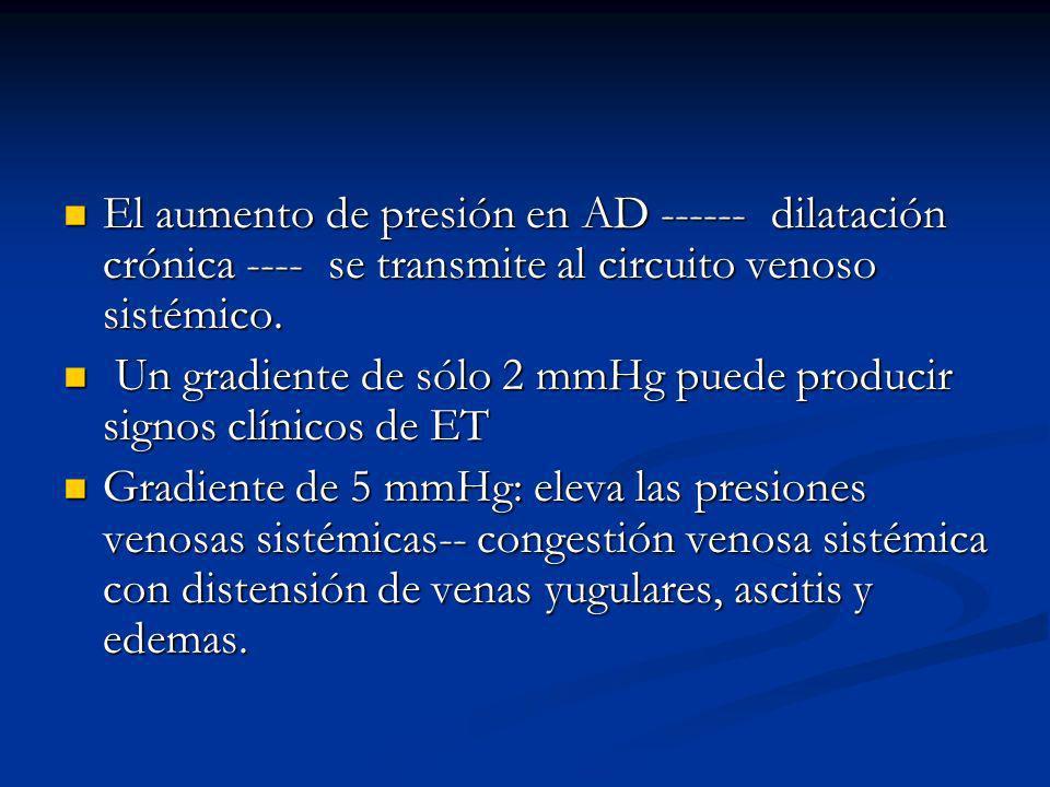 El aumento de presión en AD ------ dilatación crónica ---- se transmite al circuito venoso sistémico.