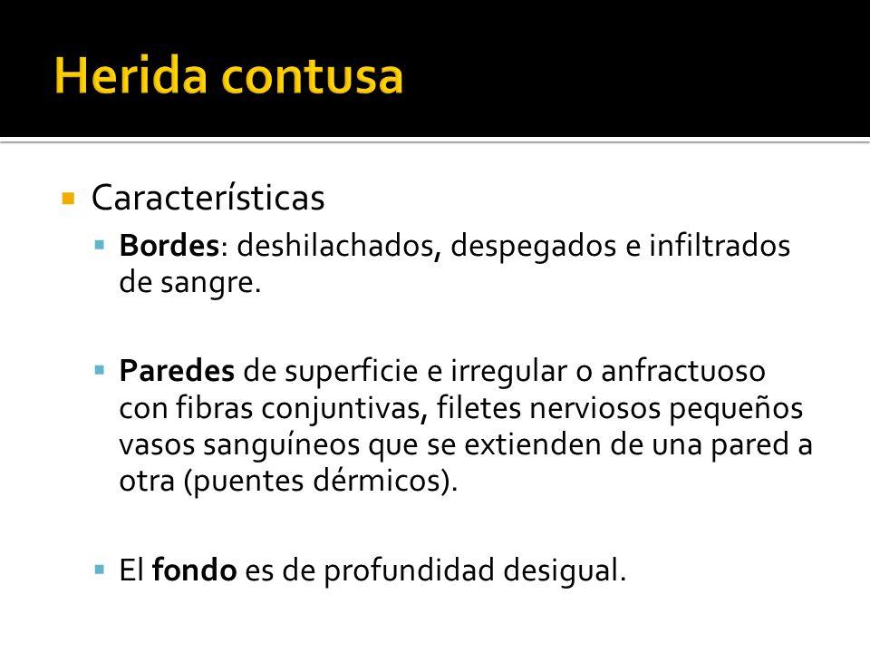Características Bordes: deshilachados, despegados e infiltrados de sangre. Paredes de superficie e irregular o anfractuoso con fibras conjuntivas, fil