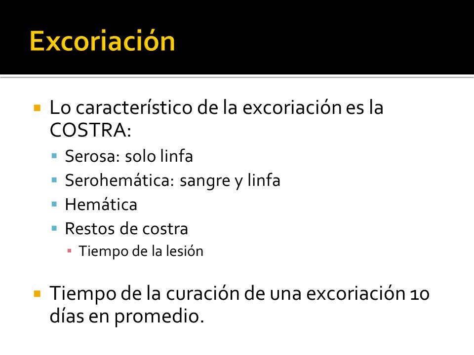 Lo característico de la excoriación es la COSTRA: Serosa: solo linfa Serohemática: sangre y linfa Hemática Restos de costra Tiempo de la lesión Tiempo