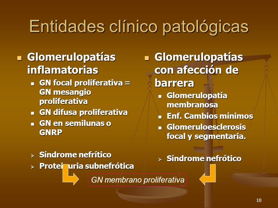 10 Entidades clínico patológicas Glomerulopatías inflamatorias Glomerulopatías inflamatorias GN focal proliferativa = GN mesangio proliferativa GN foc