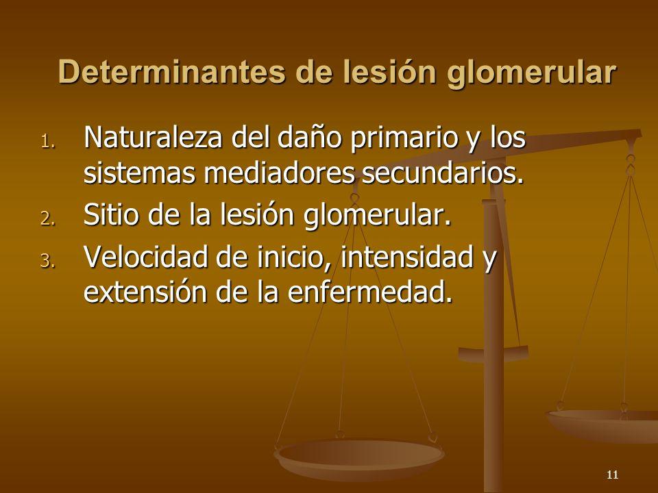 11 Determinantes de lesión glomerular 1. Naturaleza del daño primario y los sistemas mediadores secundarios. 2. Sitio de la lesión glomerular. 3. Velo