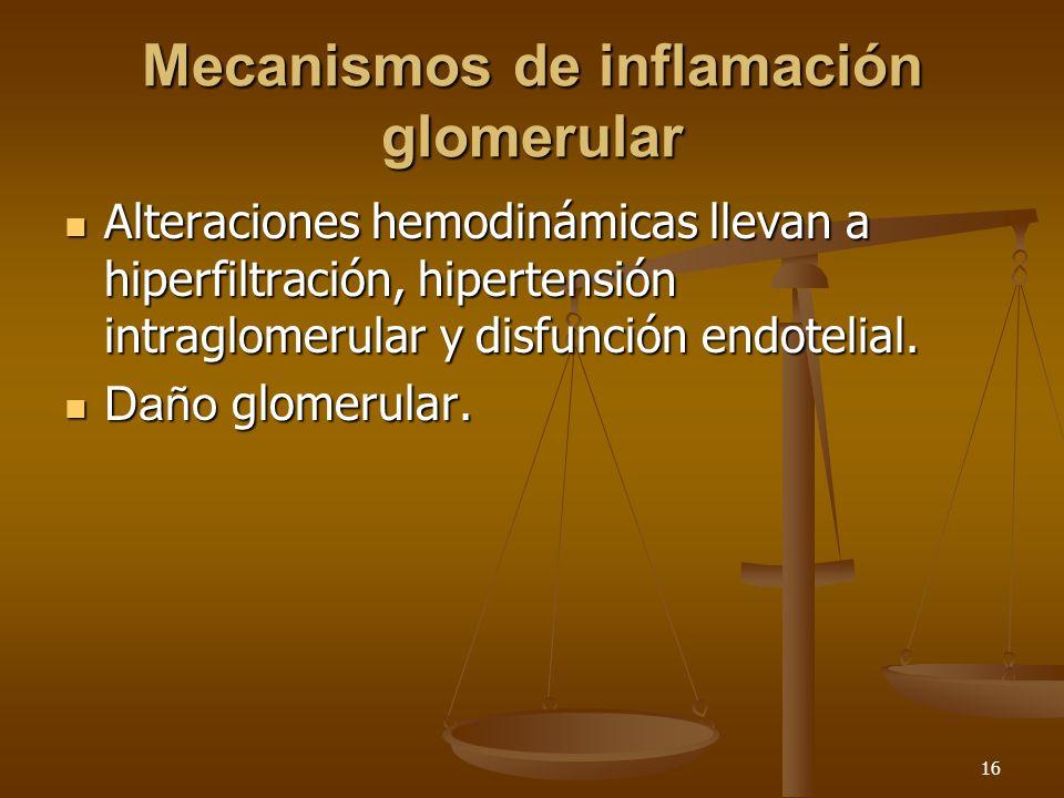 16 Mecanismos de inflamación glomerular Alteraciones hemodinámicas llevan a hiperfiltración, hipertensión intraglomerular y disfunción endotelial. Alt
