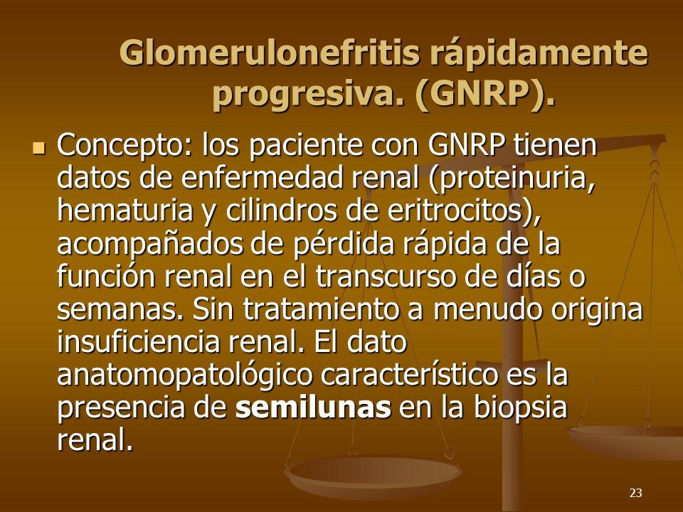 23 Glomerulonefritis rápidamente progresiva. (GNRP). Concepto: los paciente con GNRP tienen datos de enfermedad renal (proteinuria, hematuria y cilind