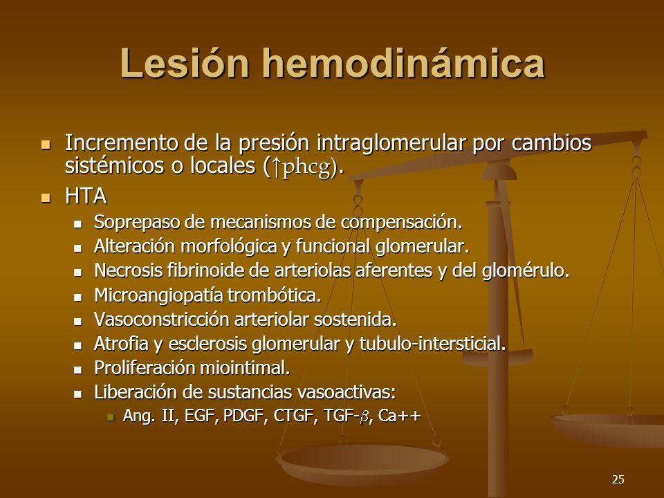 26 Hipertensión glomerular Respuesta adaptativa para incrementar el trabajo sobre las nefronas funcionales residuales posterior a la pérdida significativa de nefronas por cualquier causa.