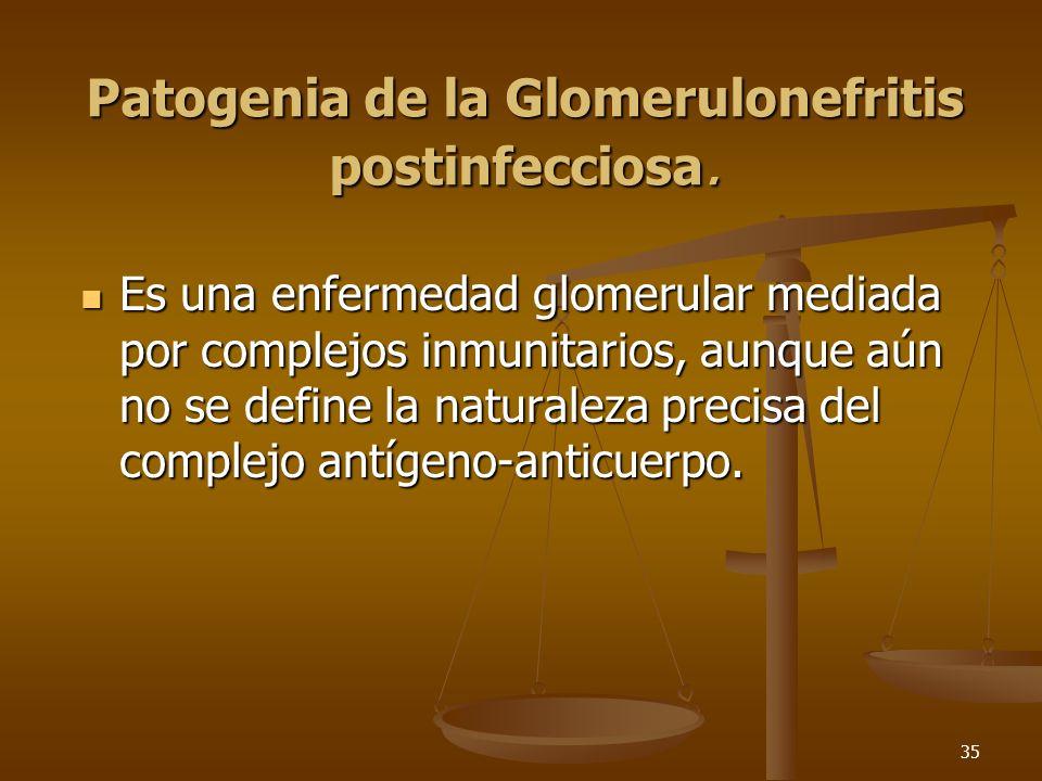 35 Patogenia de la Glomerulonefritis postinfecciosa. Es una enfermedad glomerular mediada por complejos inmunitarios, aunque aún no se define la natur