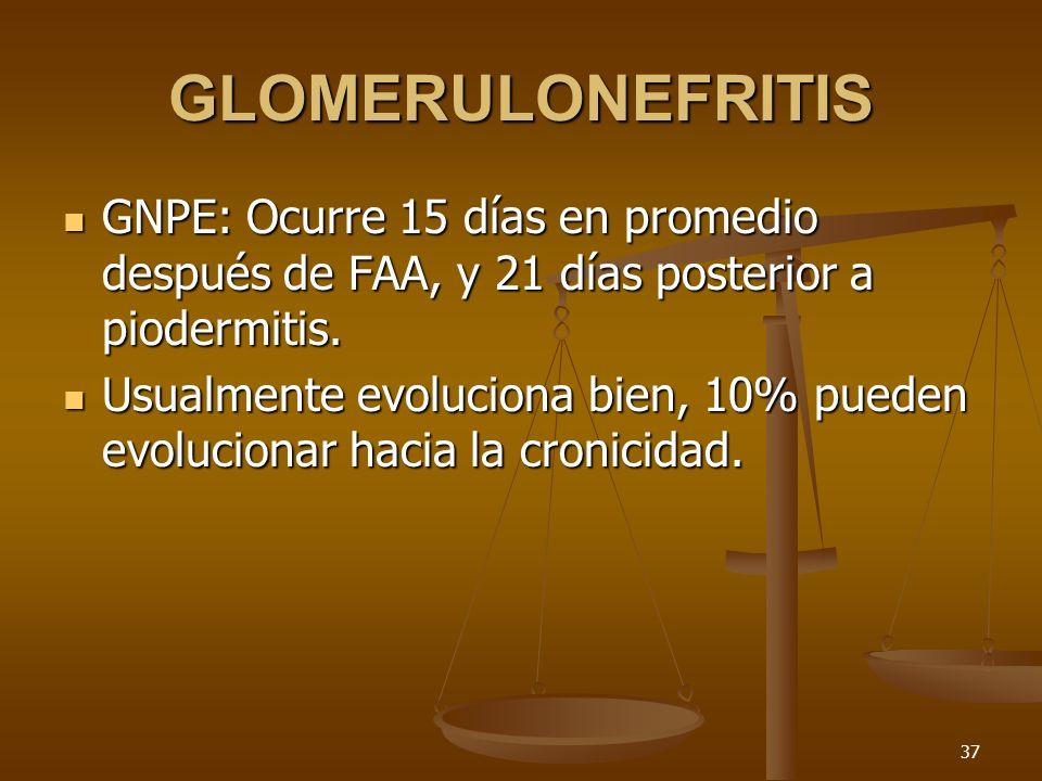 37 GLOMERULONEFRITIS GNPE: Ocurre 15 días en promedio después de FAA, y 21 días posterior a piodermitis. GNPE: Ocurre 15 días en promedio después de F