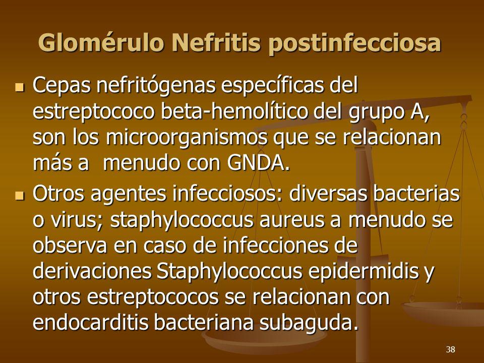 38 Glomérulo Nefritis postinfecciosa Cepas nefritógenas específicas del estreptococo beta-hemolítico del grupo A, son los microorganismos que se relac