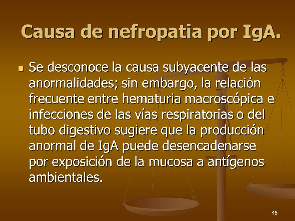 48 Causa de nefropatia por IgA. Se desconoce la causa subyacente de las anormalidades; sin embargo, la relación frecuente entre hematuria macroscópica