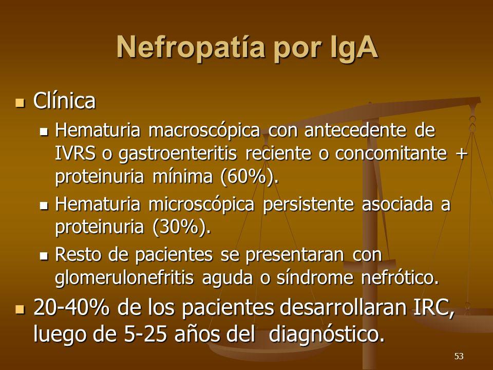 53 Nefropatía por IgA Clínica Clínica Hematuria macroscópica con antecedente de IVRS o gastroenteritis reciente o concomitante + proteinuria mínima (6