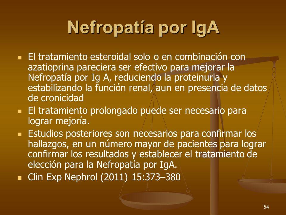 55 Nefropatía por IgA Sexo masculino, edad avanzada, hipertensión, proteinuria persistente, deterioro de función renal al momento del diagnóstico, ausencia de hematuria macroscópica y fibrosis en la biopsia renal son factores de mal pronóstico.