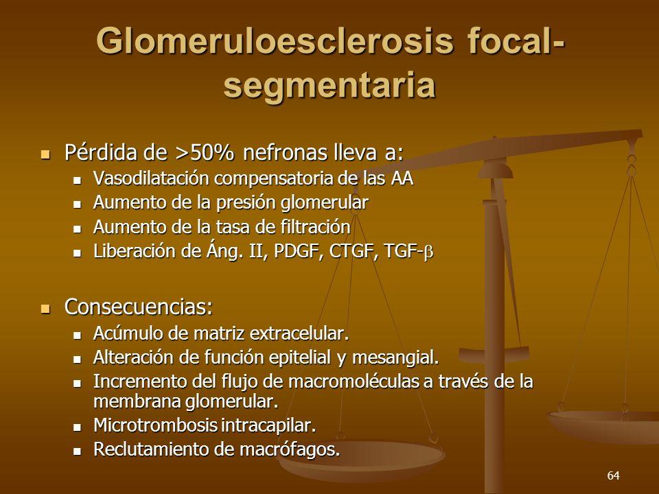 64 Glomeruloesclerosis focal- segmentaria Pérdida de >50% nefronas lleva a: Pérdida de >50% nefronas lleva a: Vasodilatación compensatoria de las AA V