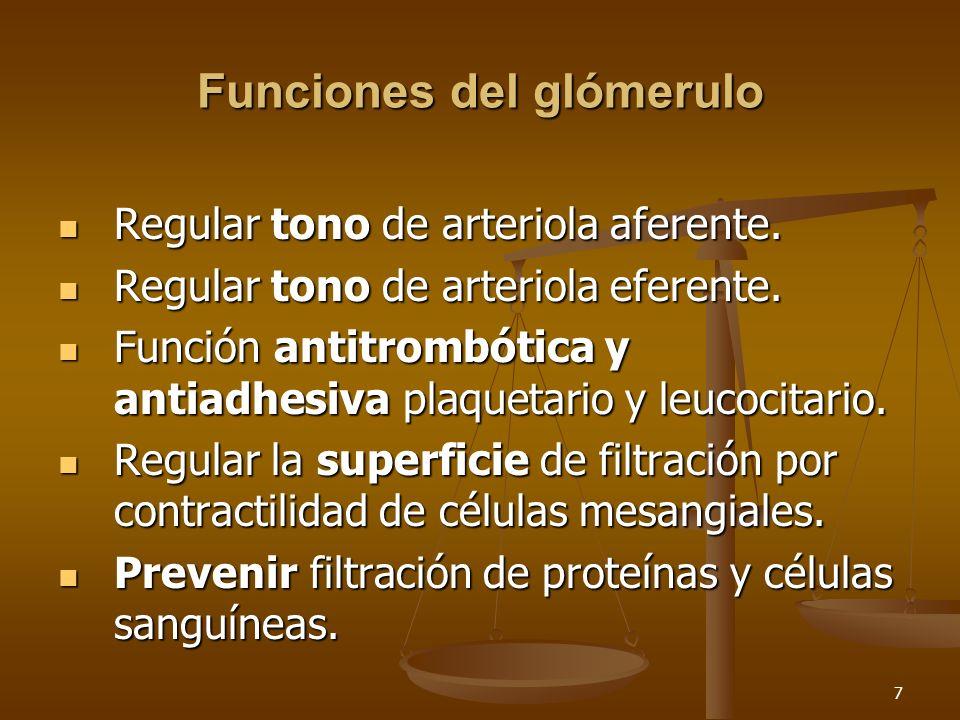 8 Nomenclatura Glomerulonefritis vrs Glomerulopatía – Datos de inflamación: Infiltración leucocitaria, depósitos de anticuerpos y activación de complemento.