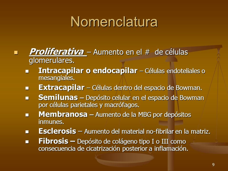 9 Nomenclatura Proliferativa – Aumento en el # de células glomerulares. Proliferativa – Aumento en el # de células glomerulares. Intracapilar o endoca